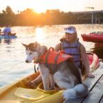 Austin Kayak Paddle for Puppies