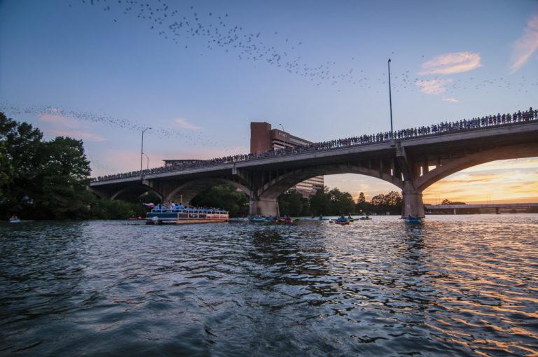 Rowing Dock Bat Paddle Lady Bird Lake